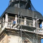 Rénovation de bâtiments : attention aux espèces protégées !