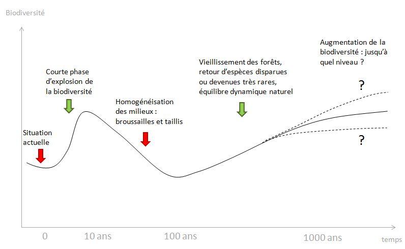 courbe biodiversité